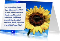 Bloemenkaart Zonnebloem - BK