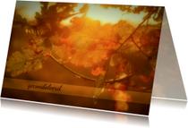 Condoleancekaarten - condoleancekaart zonlicht MM