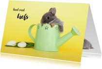 Zomaar kaarten - Heel veel liefs - konijntje