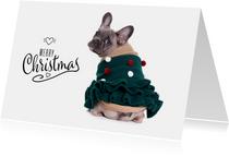 Kerstkaarten - Kerstkaart - Franse Bulldog Kerstboom trui
