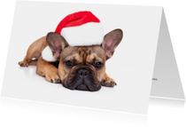 Kerstkaarten - Kerstkaart - Lieve kerst Franse Bulldog met kerstmuts