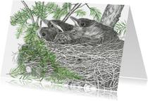 Kunstkaart nest jonge Merels