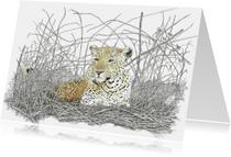 Kunstkaarten - Luipaard