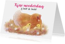 Moederdag kaarten - Moederdagkaart met  kip en kuikentjes - Chiwowy