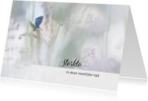 Sterkte - vlinder