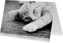 Dierenkaarten - Think of you