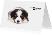 Valentijnskaart - Puppy - Dreaming of you!