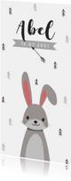Geboortekaartje hip en trendy met konijn