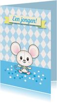 Felicitatiekaarten - Baby muisje jongen- TW