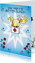 Beterschapskaarten - Beterschapskaart Rocco beterschap papegaai met rozen