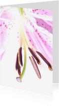 Bloemenkaarten - bloemkaart, bloem roze