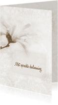 Condoleancekaarten - Deelneming met magnolia -sepia-