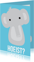 Dierenkaarten - Dierenkaart Hoeist Olifant
