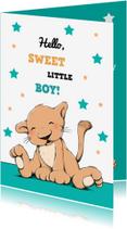 Felicitatiekaarten - Felicitatie baby leeuw ster IH