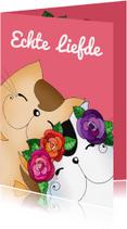 Felicitatiekaarten - Felicitatie bruiloft katten verliefd - SK