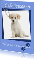 Felicitatie eerste communie pup