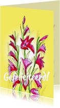 Felicitatiekaarten - Felicitatie kaarten - Vierdaagse