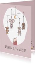 Felicitatiekaarten - Felicitatie Welkom meisje! - LFZ