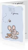 Geboortekaartjes - Geboortekaartje Knuffels LFZ