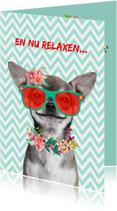 Geslaagd kaarten - Grappige geslaagd kaart met hondje