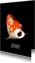 Zomaar kaarten - Grappige vis-isf