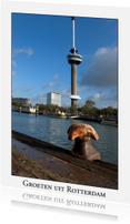 Ansichtkaarten - Groeten uit Rotterdam XXIII