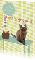 Verjaardagskaarten - happy birthday cat