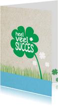 Succes kaarten - heel veel succes -BF
