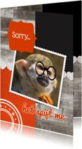 Sorry kaarten - Het spijt me aap - DH