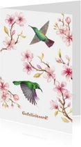 Verjaardagskaarten - Jarigkaart kersenbloesem met kolibri's