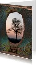 Condoleancekaarten - Kale boom bij zonsondergang