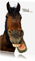 Dierenkaarten - Lachend paard-isf