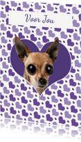 Dierenkaarten - Lieve chihuahuakaart - Remco