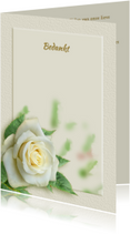 Rouwkaarten - Mooie bedankkaart met wit-gele roos en tekstvoorstel