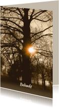 Rouwkaarten - Mooie rouwkaart, bedankt met oude boom en zon