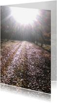 Rouwkaarten - Naar het licht toe