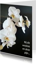 Condoleancekaarten - Orchidee tak
