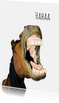 Dierenkaarten - Paard met een lach-isf