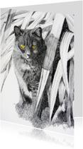 Dierenkaarten - Pentekening poes van KunstAnders