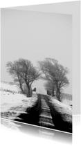 Condoleancekaarten - polderweg met bomen