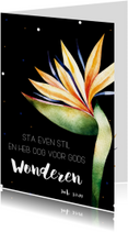 Religie kaarten - Religiekaartje: Sta even stil en heb ook voor Gods wonderen