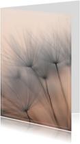 Rouwkaarten - Rouw- bedankkaart pluis zonsondergang