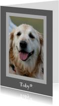 Condoleancekaarten - Rouwkaart huisdier - grijs met foto