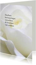 Rouwkaarten - rouwkaart roos staand