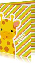Sorry Giraffe