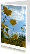 Sterkte kaarten - Sterke Boterbloemen