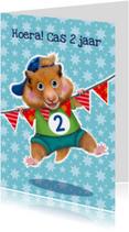 Verjaardagskaarten - verjaardagskaart hamster jongen 2 jaar