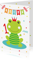 Verjaardagskaarten - Verjaardagskaart kikker slinger confetti
