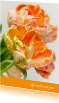Bloemenkaarten - Verjaardagskaart PapegaaiTulp OT
