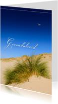 Condoleancekaarten - Zeemeeuw over de duinen